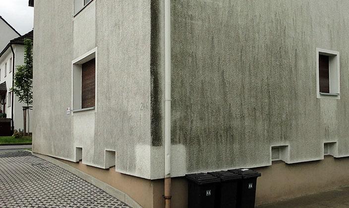Fassadenreinigung-Dortmund-Fassadenblitz-min